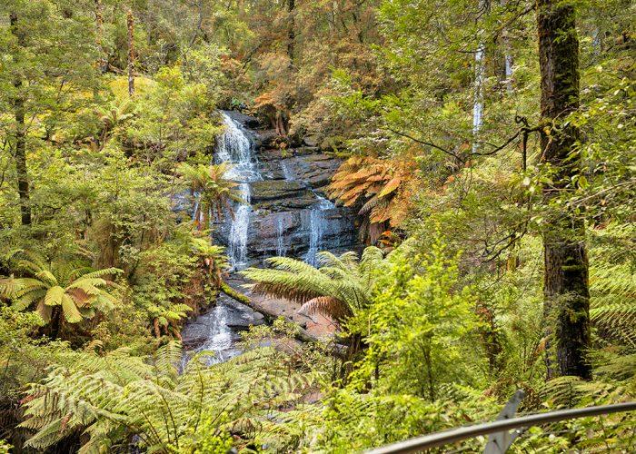 奧特韋國家公園 Great Otway National Park